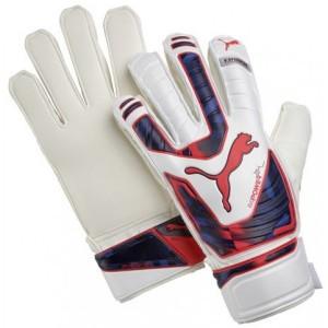 puma-evopower-protect-3-goalkeeper-gloves-04097915